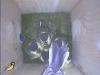 nistkasten-17052011-090520