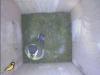nistkasten-17052011-100530