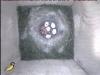 Der Eizahn kommt zum Einsatz 4